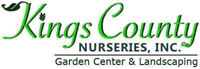 Kings County Nursery Inc